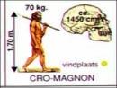 Xem hình 5, em thấy Người tinh khôn khác Người tối cổ ở những điểm nào ?