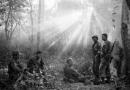 Tác động của chính sách khai thác thuộc địa của thực dân Pháp đối với kinh tế, xã hội Việt Nam