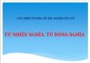 Luyện từ và câu: Từ nhiều nghĩa trang 66  SGK Tiếng Việt 5 tập 1