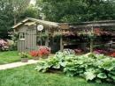Soạn bài tập đọc : Chuyện một khu Vườn nhỏ trang 102 sgk Tiếng Việt lớp 5