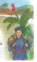 Luyện từ và câu bài nhớ Việt Bắc
