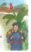 Soạn bài Nhớ Việt Bắc trang 115 SGK Tiếng Việt 3 tập 1