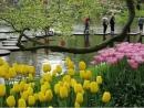 Tả một khu vườn hoa