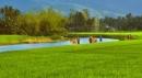 Em hãy lập dàn ý về bài thơ Nhớ con sông quê hương của nhà thơ Tế Hanh