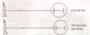 Câu 1, câu 2, câu 3, câu 4 trang 161 sinh học lớp 8