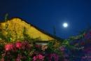 Tả cảnh đêm trăng sáng