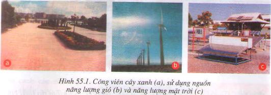 Ô nhiễm môi trường ( tiếp theo )