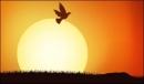 Soạn bài Mặt trời mọc ở đằng tây trang 52 SGK Tiếng Việt 3 tập 2