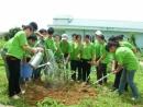 Viết một đoạn văn ngắn thuật lại ý kiến của các bạn trong nhóm em về những việc cần làm để bảo vệ môi trường. (Bài 1)