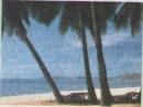 HOLIDAY IN NHA TRANG - Kỳ nghỉ ở Nha Trang - trang 86 sgk Tiếng Anh 7