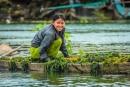 Soạn bài Mùa nước nổi trang 19 SGK Tiếng Việt 2 tập 2