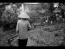 """Suy nghĩ của em về ý kiến: nhân vật Việt và Chiến trong """"Những đứa con trong gia đình"""" vừa có những nét giống nhau lại vừa có những nét khác nhau"""