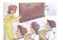 Lesson 1 - Unit 2 trang 12, 13 SGK Tiếng Anh lớp 3