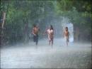 Tả cơn mưa rào đầu hè (lập dàn ý rồi viết thành văn)