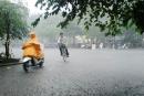 Viết bài văn tả cơn mưa