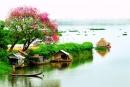 Viết một đoạn văn miêu tả cảnh thiên nhiên ở địa phương em