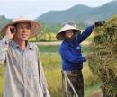 Kể một câu chuyện về một việc làm góp phần xây dựng kinh tế văn hoá quê hương