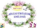 Luyện tập Những câu hát về tình yêu quê hương, đất nước con người trang 40 SGK Ngữ Văn 7