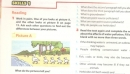Skills 1 trang 12 Unit 7 SGK Tiếng Anh 8 mới