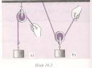 Bài C1 trang 50 SGK Vật lý 6