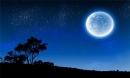 Soạn bài Ngắm trăng trang 37 SGK Văn 8