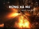 Soạn bài Rừng xà nu - Nguyễn Trung Thành - SGK Ngữ Văn lớp 12 tập 2