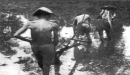 Quan sát hình 3, em hãy nêu nhận xét về tình cảnh người nông dân Việt Nam cuối thế kỉ XIX- đầu thế kỉ XX.