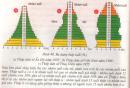 Câu hỏi lý thuyết 2 trang 144 SGK Sinh học 9