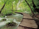 Hãy kể tên những danh lam thắng cảnh, di tích lịch sử nổi tiếng của Hà Nội mà em biết.