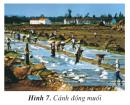 Bài 2 trang 140 SGK Địa lí 4