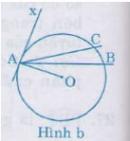 Bài 30 trang 79 sgk Toán lớp 9 tập 2