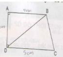 Bài 31 trang 79 sgk Toán lớp 9 tập 2