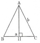 Bài 24 trang 123 sgk toán lớp 8 tập 1