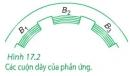 Bài 4 trang 94 sgk vật lý 12