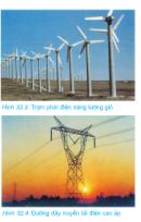 Câu 3 trang 115 SGK Công Nghệ 8
