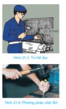 Câu 3 trang 110 SGK Công Nghệ 8
