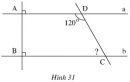 Bài 46 trang 98 - Sách giáo khoa toán 7 tập 1