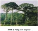 Bài 3 trang 81 SGK Địa lí 5