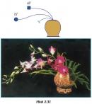 Bài thực hành: Cắm hoa dạng thẳng nghiêng trang 59 SGK Công nghệ 6