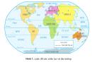 Tìm các đại dương trên quả Địa cầu hoặc trên Bản đồ Tự nhiên Thế giới.