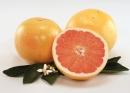 Câu 4 trang 37 SGK Công Nghệ 9 - Trồng cây ăn quả