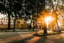 Viết cảm nhận của mình về nắng Sài Gòn