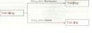 Câu 1 trang 81 SGK Tin học lớp 6