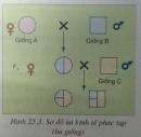 Câu 3 trang 76 SGK Công nghệ 10