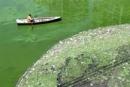 Thế nào là nước bị ô nhiễm?