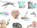 Bọ gậy muỗi vằn thường sống ở đâu ?