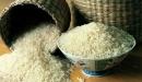 Bạn cần chuẩn bị những gì để tách gạo ra khỏi hỗn hợp gạo lẫn với sạn?