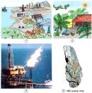 Kể tên một số tài nguyên mà bạn biết. Trong các tài nguyên đó, tài nguyên nào được thể hiện trong những hình dưới đây ?