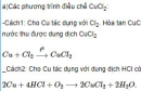 Bài 3 trang 213 SGK hóa học 12 nâng cao