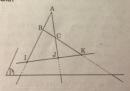 Câu 5 trang 50 SGK Hình học 11 Nâng cao